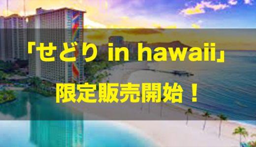 ハワイ×Amazon転売マニュアル??