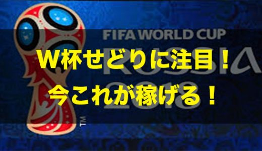 ワールドカップ(W杯)せどり(転売)