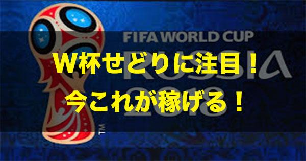 W杯せどり ワールドカップ